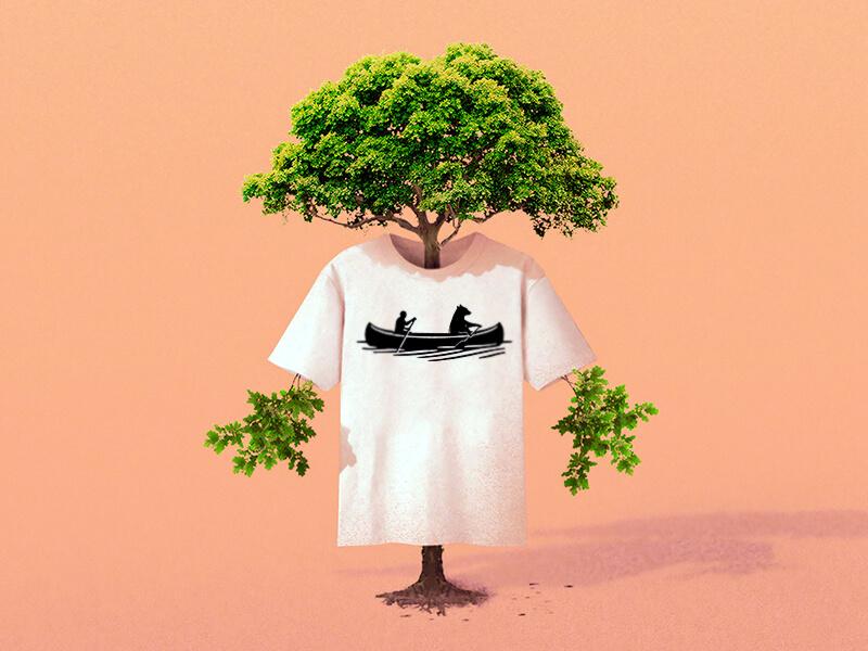 We plant trees!